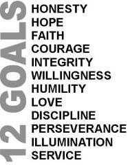 12 goals